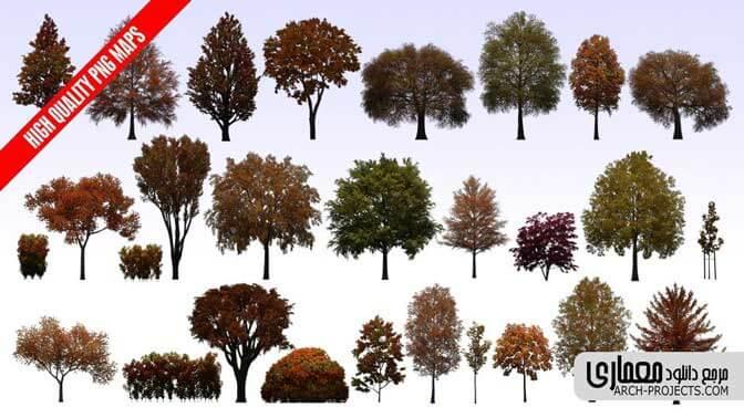 عکس png درخت