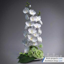 مدل سه بعدی گل و گیاه دکوری