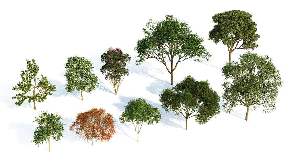 پلاگین ساخت گیاهان