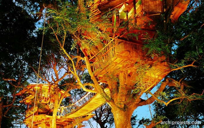 آپارتمان درختی