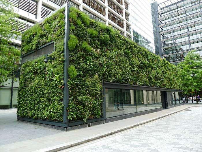نقش طبیعت در معماری