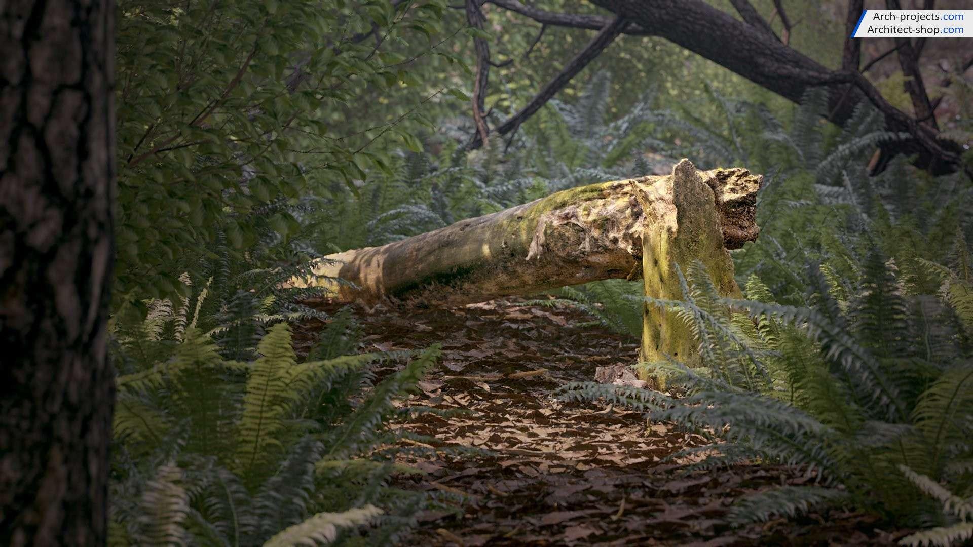 مدل سه بعدی تنه درخت