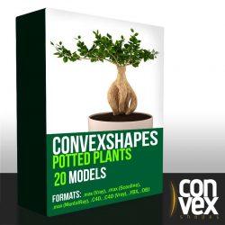 دانلود رایگان مدل سه بعدی گیاهان گلدانی از CGAxis