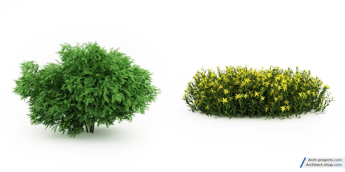 مدل سه بعدی گیاهان باغچه