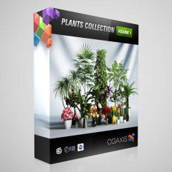 دانلود رایگان مدل سه بعدی درختچه از CGAxis
