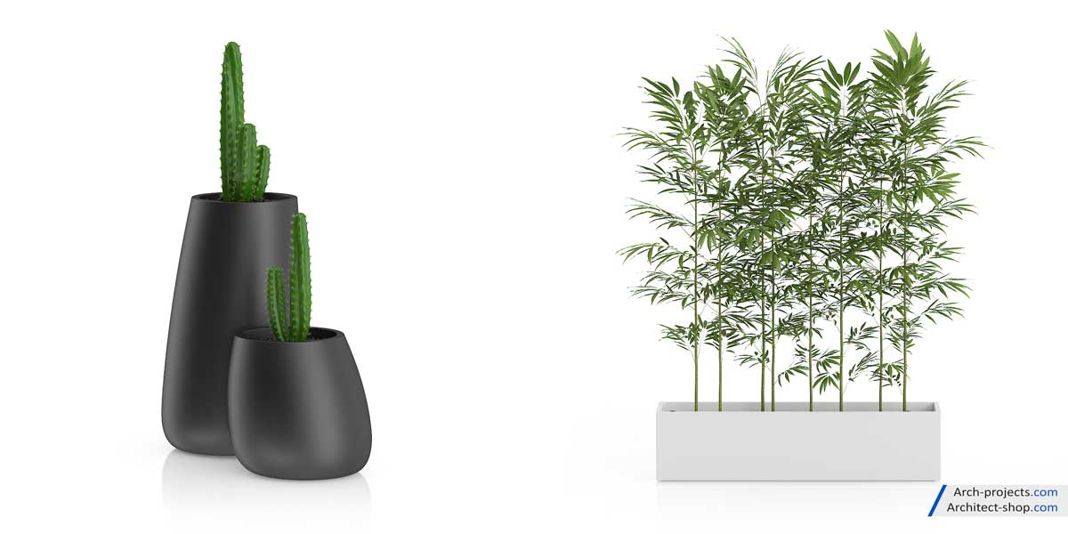 دانلود رایگان مدل سه بعدی گیاه