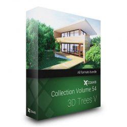 دانلود مدل سه بعدی درخت از CGAxis