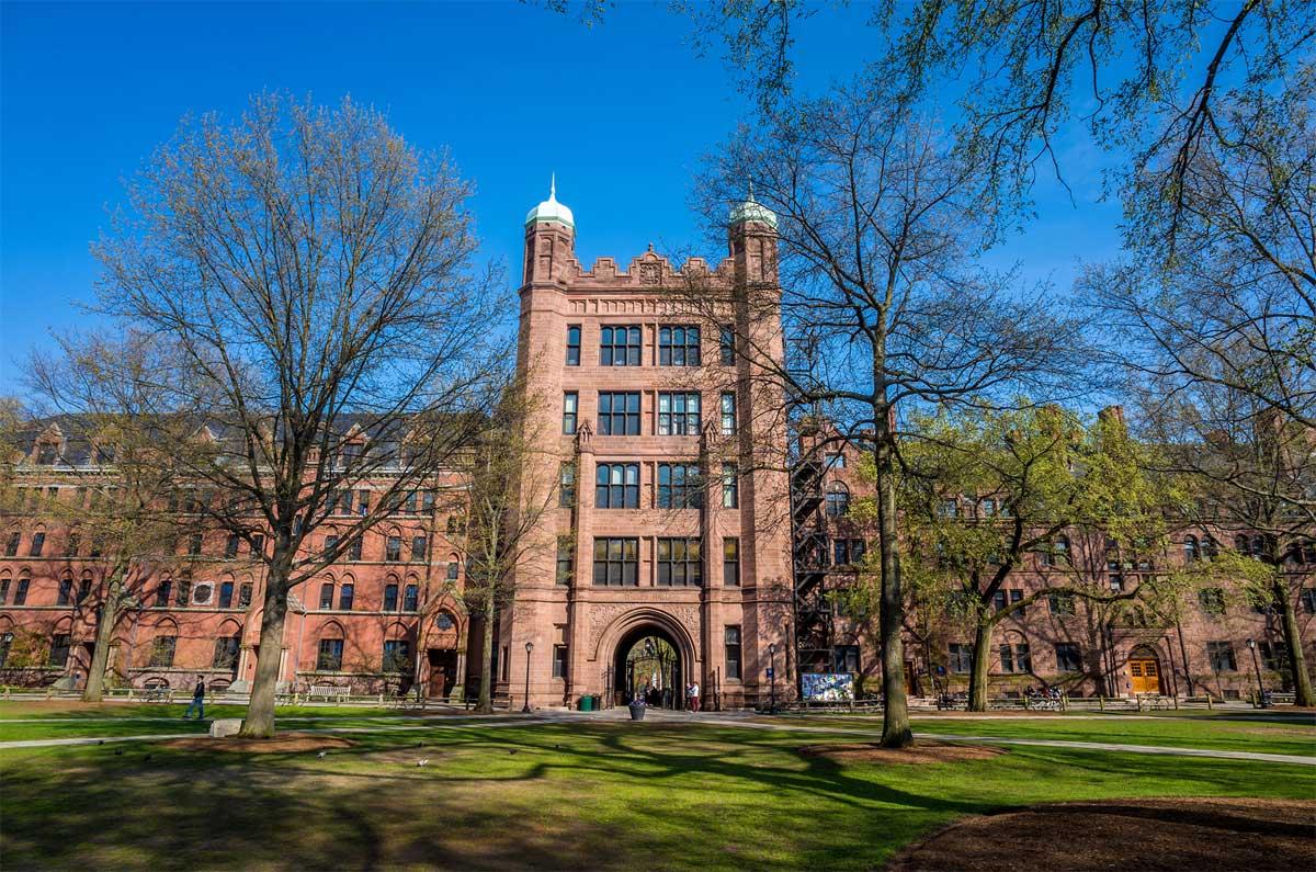 طراحی دانشگاه