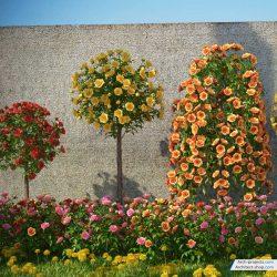 آبجکت گل و گلدان از 3DMentor