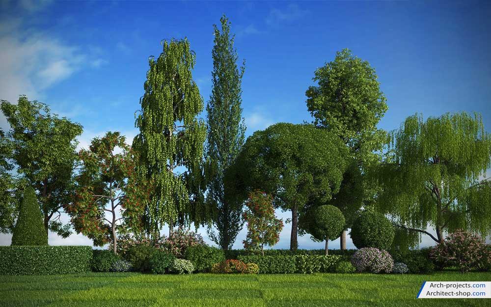 آبجکت درخت