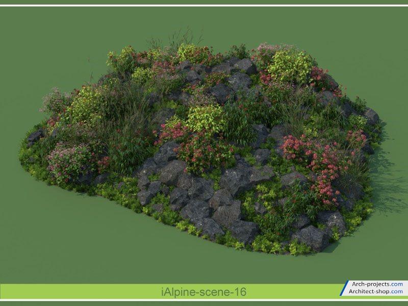 مدل سه بعدی بوته و درختچه تزئینی