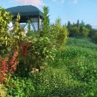مدل سه بعدی گیاهان کوهستانی