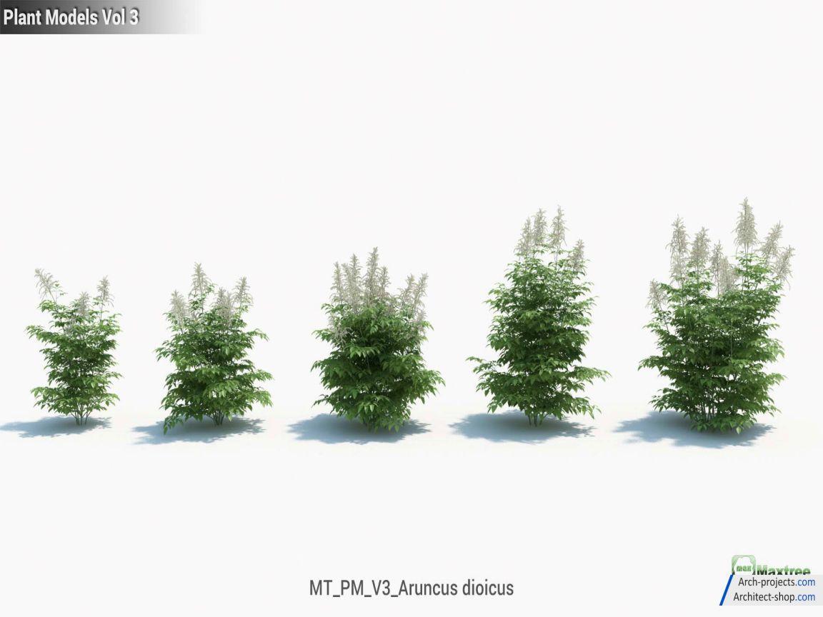 آبجکت درخت و گیاه