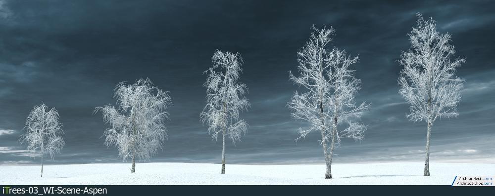 آبجکت درخت زمستانی