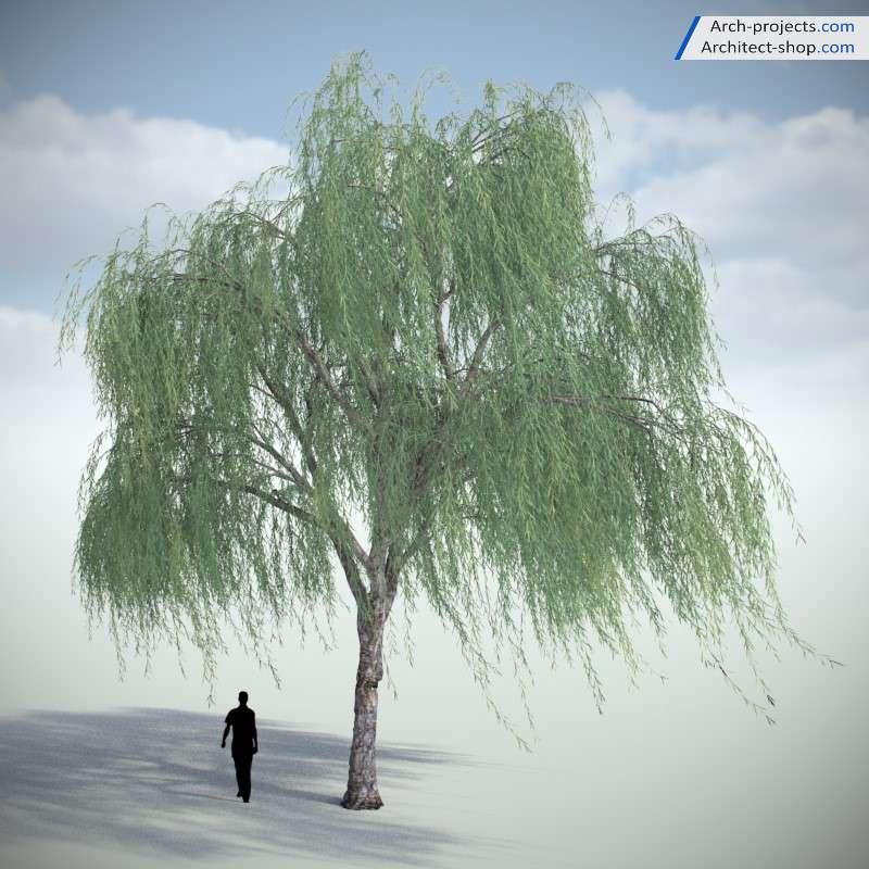 آبجکت درخت تری دی مکس