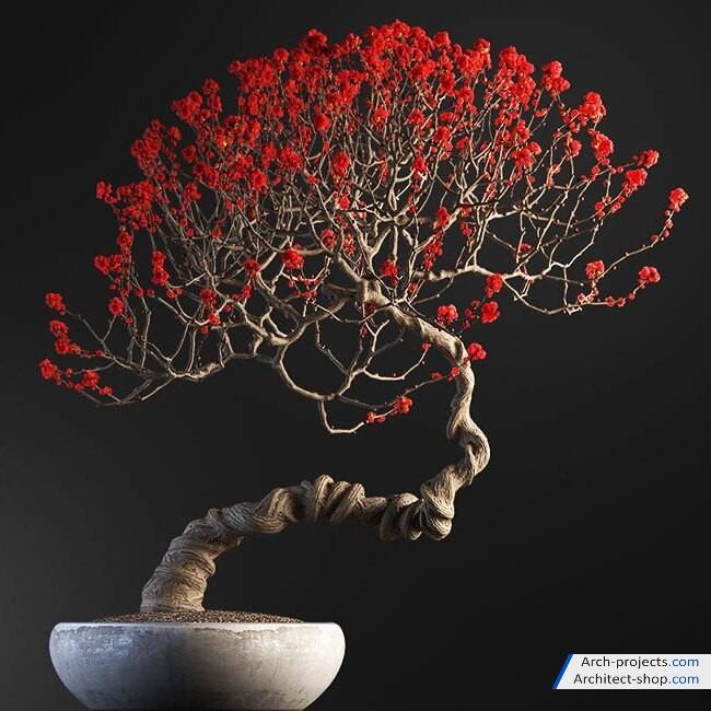 مدل سه بعدیگیاهان گلدانی