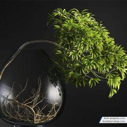 دانلود آبجکت گیاهان گلدانی – مدل سه بعدی بونسای