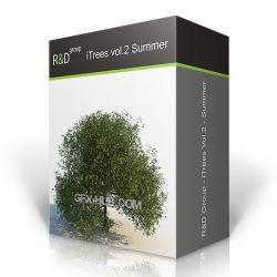 دانلود مدل سه بعدی درخت تابستانی