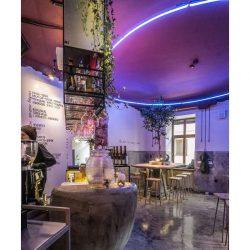 طراحی کافه رستوران گیاهخواران