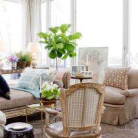 گیاهان آپارتمانی در طراحی داخلی