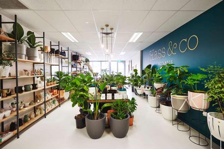 فروشگاه گیاهان دارویی