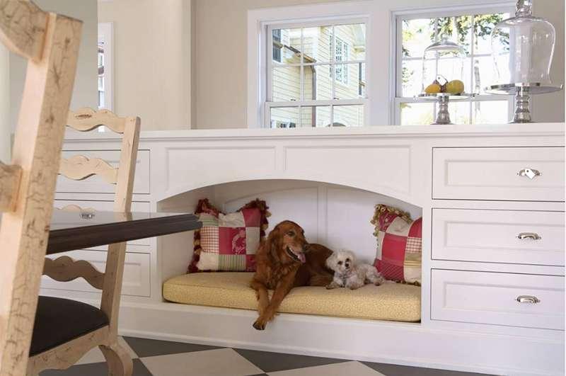 ساخت خانه برای سگ و گربه