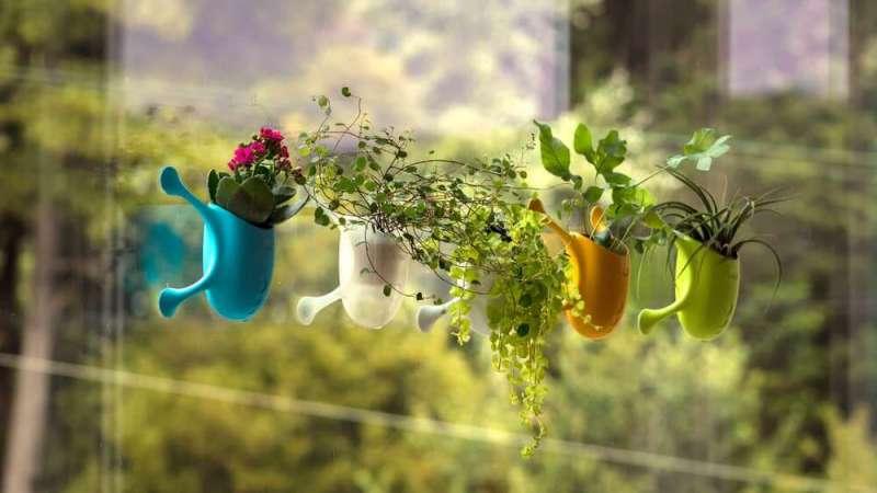 طراحی گلدان عمودی Livi