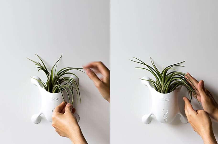طراحی گلدان عمودی