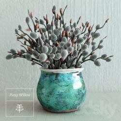 دانلود مدل سه بعدی گیاهان گلدانی و آپارتمانی