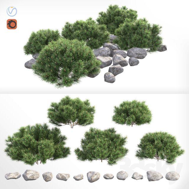 مدل سه بعدی بوته گیاه