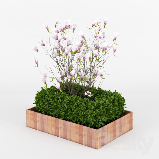 مدل سه بعدی گیاه باغچه ای