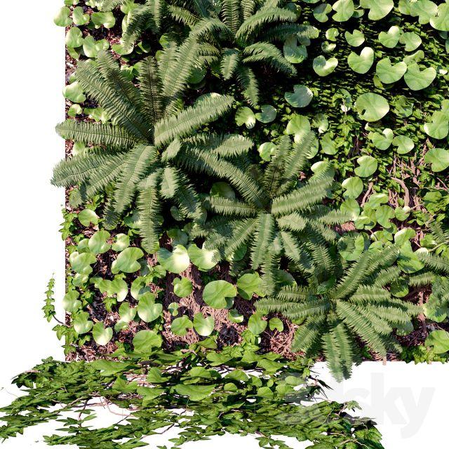 آبجکت گیاهان زینتی
