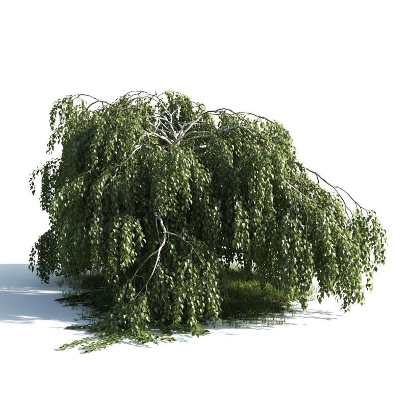 دانلود آرچ مدل 176 - مدل سه بعدی درخت