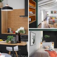 دکوراسیون آپارتمان با تم سبز و مشکی
