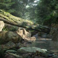 آبجکت درخت و صخره
