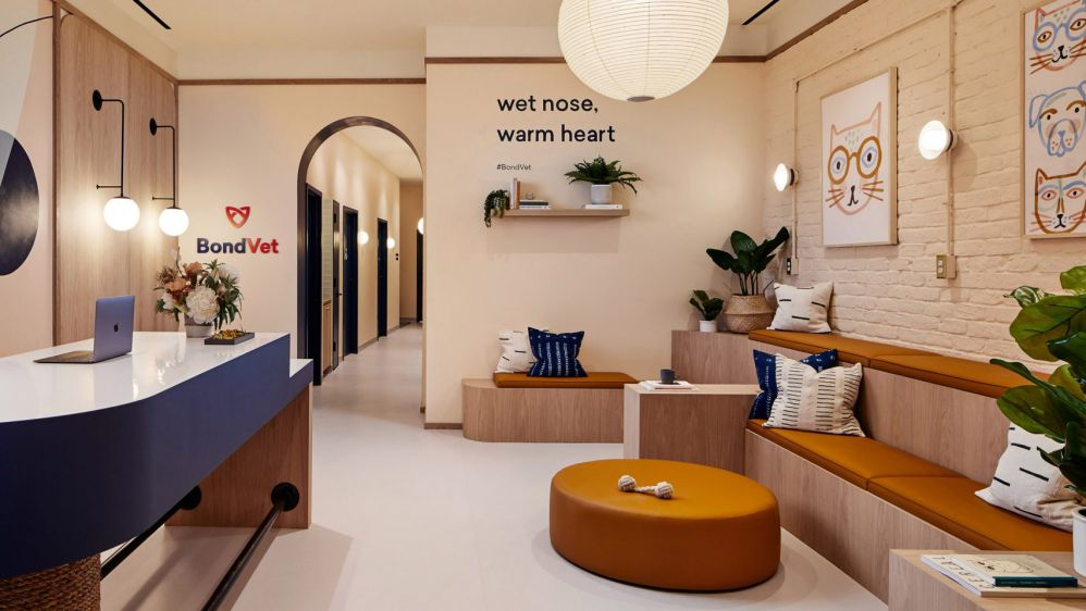طراحی داخلی کلینیک دامپزشکی