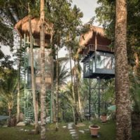طراحی هتل درختی در جنگل