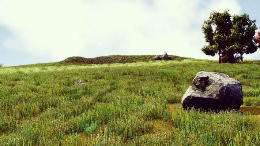 دانلود تکسچر گیاه – HQ Photographic Textures Grass