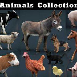 دانلود آبجکت حیوانات مزرعه