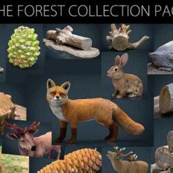 دانلود آبجکت جنگل – The Forest Collection Pack