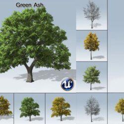 دانلود آبجکت درخت برای آنریل انجین