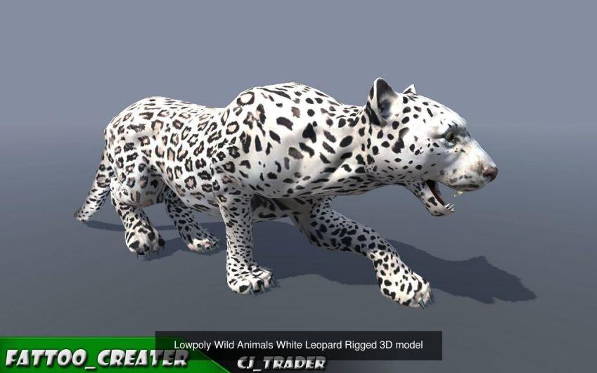مدل سه بعدی حیوانات انیمیت شده