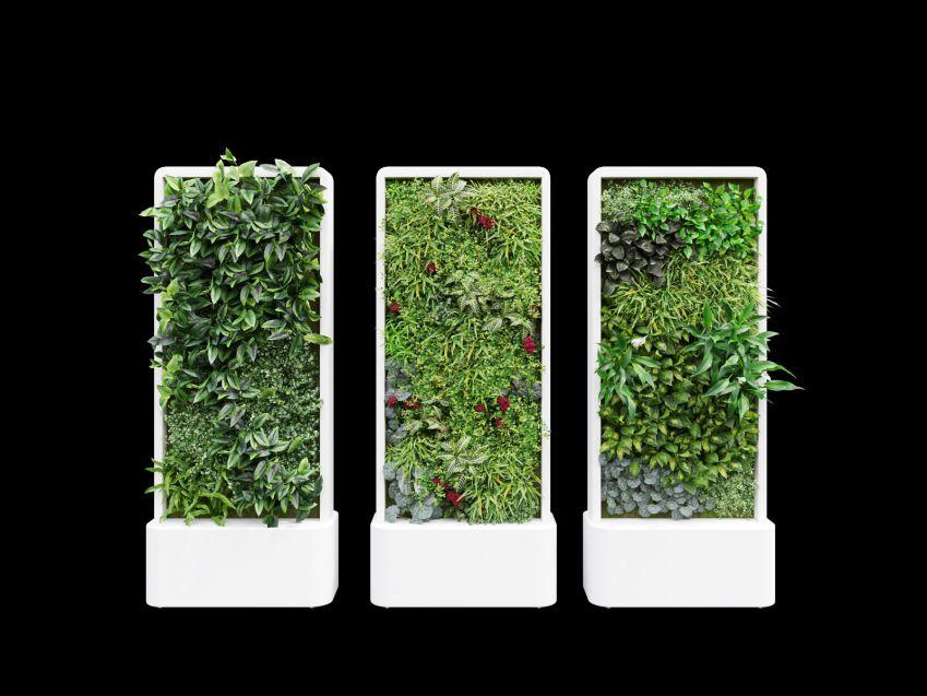 مدل سه بعدی سه بعدی گیاه تزئینی