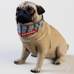 دانلود آبجکت حیوانات از Pro 3DSky