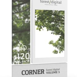 دانلود 123 پرسوناژ درخت با فرمت PNG – کالکشن 3