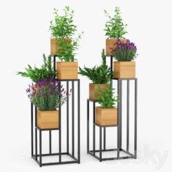 دانلود 82 آبجکت گل و گلدان از Pro 3DSky – کالکشن 7