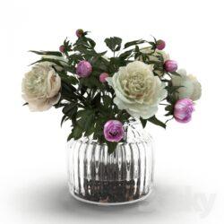 دانلود 78 آبجکت گل و گلدان از Pro 3DSky – کالکشن 4