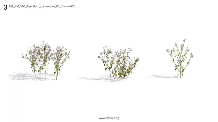 دانلود 72 آبجکت گل و بوته