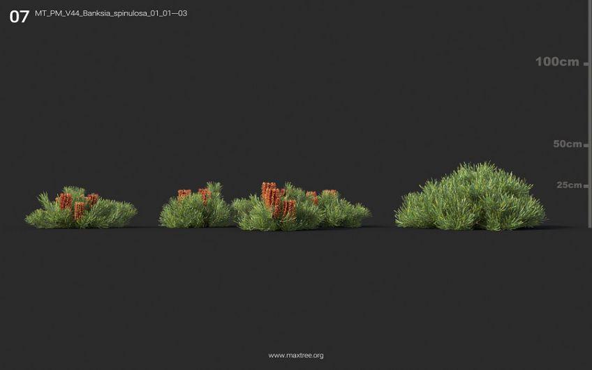 دانلود 126 آبجکت گل و گیاه