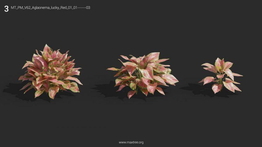 دانلود 72 آبجکت گل و گیاه